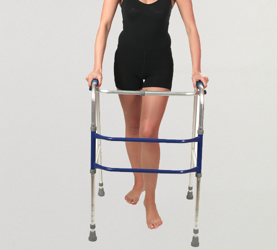 <h5>Walking Support</h5>